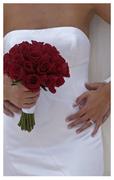 Weddings Riviera Maya - Coordinators/Planners - Playa del Carmen, Mayan Riviera, 77710, Mexico