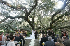 Burkle Events - Coordinators/Planners - Tampa Bay, FL