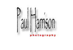 Paul Harrison Photography - Photographer - 3205 Stoney Creek Drive W., Williamsburg, VA, 23185, USA