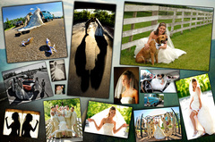 Ken Love Photography - Photographers, Videographers - 2116 Coon Rd., Akron, , OH , 44321, USA