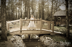 Amber Springs - Ceremony Sites, Ceremony & Reception, Reception Sites - 14135 Laramie Trail, Montgomery, Texas, 77316, USA