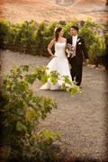 Sonoma Wedding In August in Temelec, CA, USA