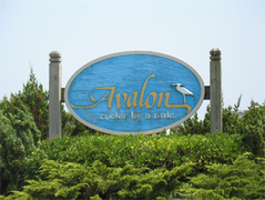 Avalon Wedding In October in Sea Isle City, NJ, USA