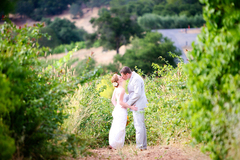 Chelsea  and Matthew's Wedding in Glen Ellen, CA, USA