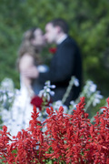 Casey and Brandon's Wedding in Deephaven, MN, USA