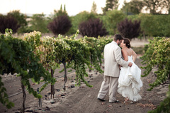 Stacy Hartman and Sean Greenwood's Wedding in Paso Robles Ca, USA