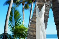 Erin and Christian's Wedding in Islamorada, FL, USA