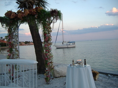 St Pete Florida Wedding In October