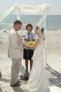 David and Michele's Wedding in N Redington Bch, FL, USA