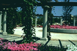 Michigan State University Gardens - Ceremony Sites, Attractions/Entertainment, Reception Sites, Ceremony & Reception - A222 Plant and Soil Sciences Building, East Lansing, MI, USA