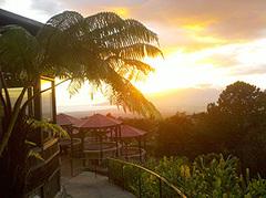 Kula Lodge & Restaurant - Hotel - 15200 Haleakala Highway, Kula, HI, United States