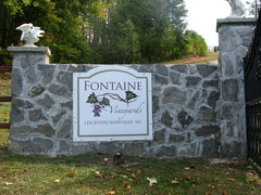 fontaine vineyard - Ceremony - Mount Airy rd./ Hallaran drive, Leicester, NC, 28748, USA