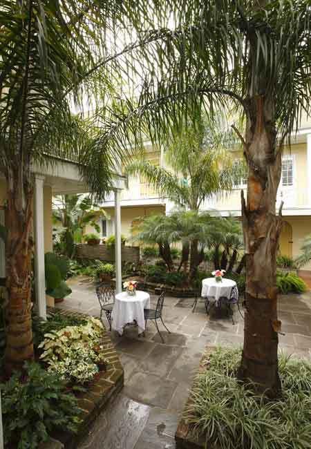 Cocktail Party! - Reception Sites - 418 Dauphine St, New Orleans, LA, 70112, US