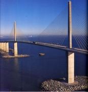 Proposal Site! - Attraction - Sunshine Skyway Bridge, FL, Florida, US