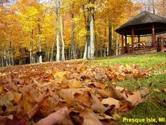 Presque Isle Park - Ceremony - Peter White Drive, Marquette, MI, United States