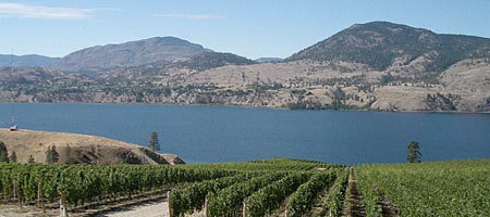 Painted Rock Estate Winery Ltd - Wineries - 4850 Lakeside Rd, Penticton, BC, Canada