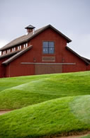 Highland Meadows Golf Course - Ceremony Sites, Attractions/Entertainment - 6300 Highland Meadows Pkwy, Windsor, CO, 80550