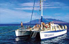 Snorkeling cruise on the Trilogy V - Attraction -