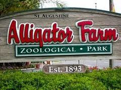 St. Augustine Alligator Farm and Zoological Park - Attraction - 999 anastasia blvd, Saint Augustine, FL, United States