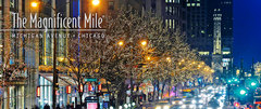 Magnificent Mile - Shopping - 806 N Michigan Ave, Chicago, IL, US