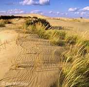 Jockey's Ridge State Park - Things to do - 300 West Carolista Drive, Nags Head, NC, United States