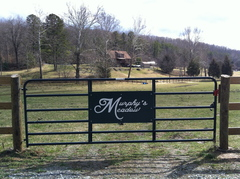 Murphy's Meadow Horse Farm - Ceremony & Reception - 3703 Lawyers Rd, Lynchburg, VA, 24501, USA