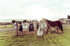 Lahaina Animal Farm  - Ceremony & Reception - 108 S Lauhoe Pl, Maui, HI, 96761