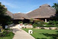 Hotel Las Palapas - Reception - Av 34 Norte S/N entre 5a Av y ZFM, Apartado Postal 116, Playa del Carmen, Quintana Roo, Mexico