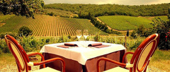 Ristorante Podere Le Vigne - Restaurant - Località Podere Le Vigne, Radda in Chianti, Tuscany, Italy