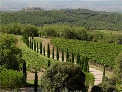 Ristorante di Poggio Antico - Winery - Località Poggio Antico, Montalcino, Italy
