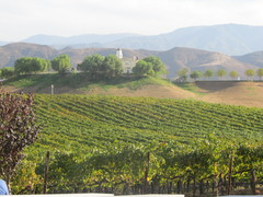 Danza del Sol Winery - Reception - 39050 De Portola Rd, Temecula, CA, 92592