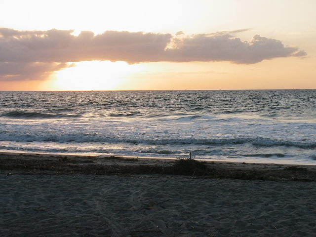 Main Beach - Beaches, Attractions/Entertainment -