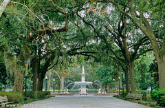 Savannah Wedding In September in Savannah, GA, USA