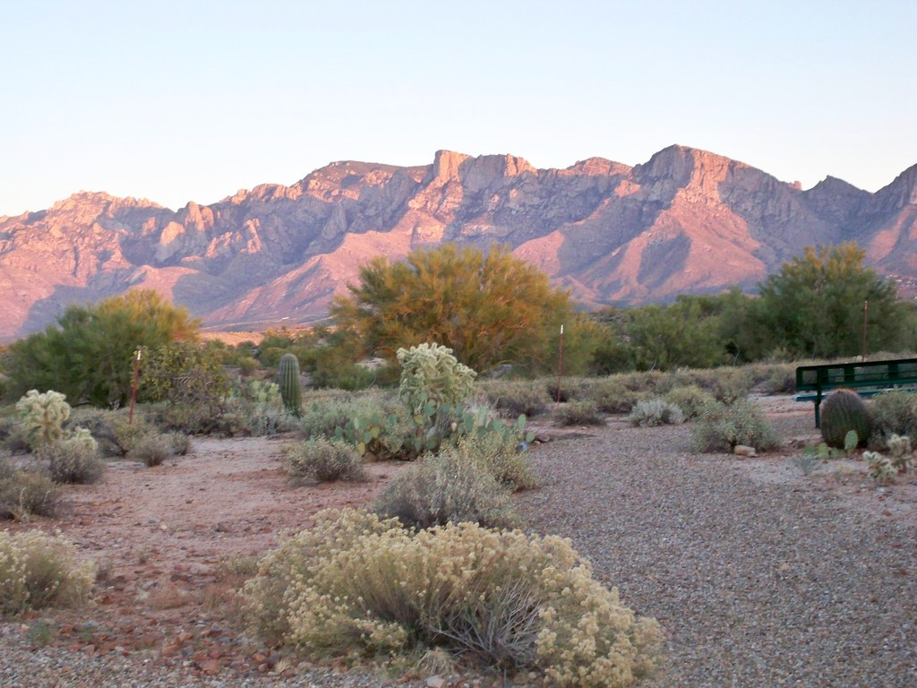 Copper Creek Park - Ceremony Sites - 11800 N Copper Spring Trail, Oro Valley, AZ, 85737