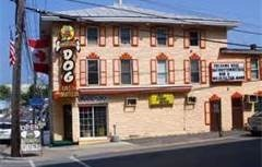 The Dancing Dog Night Club - Attractions/Entertainment - 45 Church Street, Alexandria Bay, NY, 13607