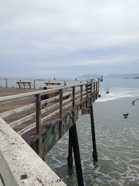Pismo Beach - Beaches, Attractions/Entertainment - Pismo Beach, CA, Pismo Beach, CA, US