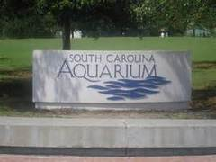 South Carolina Aquarium - Attraction - 100 Aquarium Wharf, Charleston, South Carolina, 29401