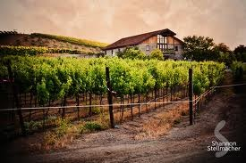 Murrieta's Well - Wineries, Ceremony Sites - 3005 Mines Rd, Alameda County, CA, 94550, US