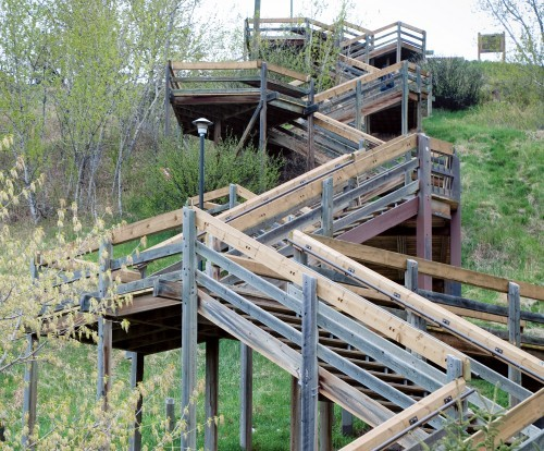 Crescent Heights Stairs And Ridge Walk - Parks/Recreation -