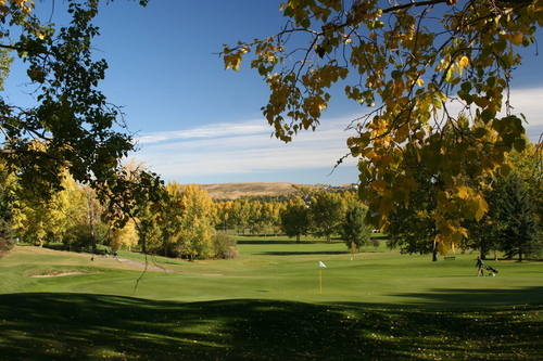 Confederation Park Golf Course - Golf Courses, Attractions/Entertainment - 3204 Collingwood DR NW, Calgary, AB, Canada