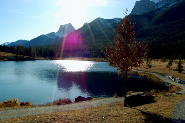 Quarry Lake Park - Ceremony Sites - Spray Lakes Rd, Canmore, AB