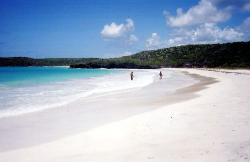 Vieques - Attractions/Entertainment -