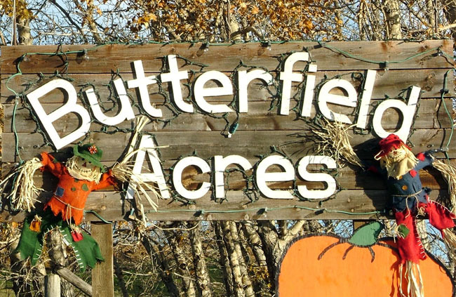 Butterfield Acres Petting Zoo - Attractions/Entertainment -