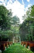Lauren and Brian's Wedding in Goodlettsville, TN, USA