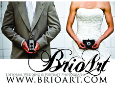 Brio Art - Photographers - 100 W Franklin, Minneapolis, MN, 55404, usa