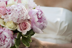 Raintree Florist - Florists, Shopping - 5543 Edmondson Pike, Suite 17, Nashville, Tennessee, 37211, USA