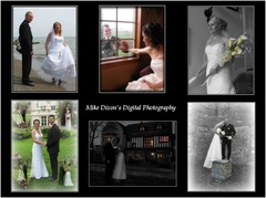 Mike Dixon's Digital Photography - Photographer - po box 467, Belle River, ontario, N0R 1A0, Canada