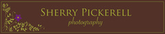 Sherry Pickerell Photography - Photographers - 1580 Cedar Drive, Southold, NY, 11971, USA