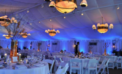 Orlando Dj And Lighting - Lighting Vendor - 1643 natchez trace blvd, orlando, fl, 32818