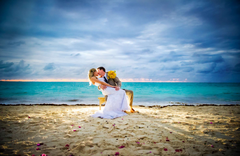 True Photography Weddings - Photographers - 444 South Cedros Ste 190, Solana BEach, Ca, 92075, US